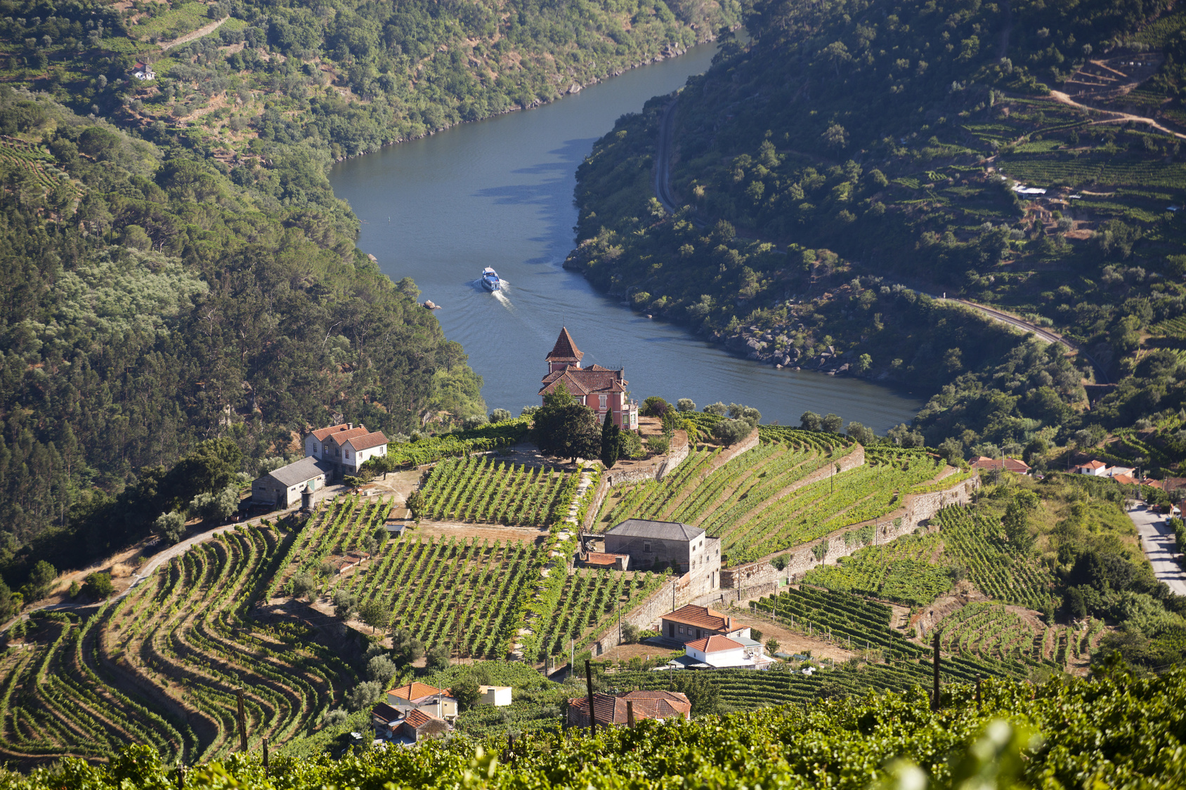 About Douro Valley Tours