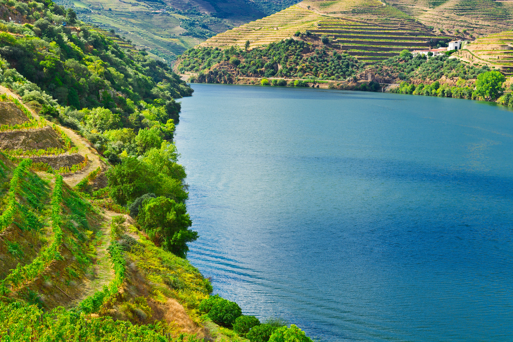 Valley Douro tours