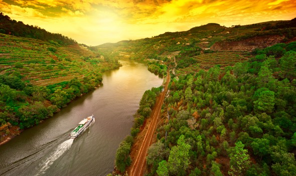 Vineyards in the Valley of the River Douro, Portugal