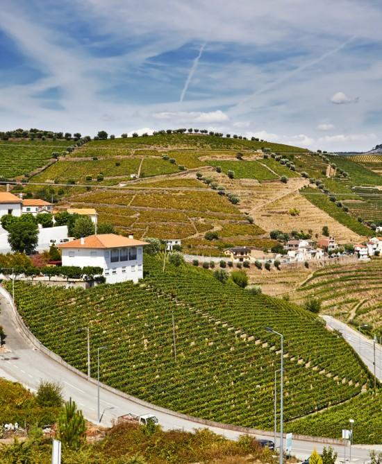 the Douro region, Portugal bike tour